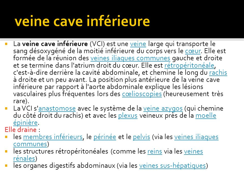 veine cave inférieure