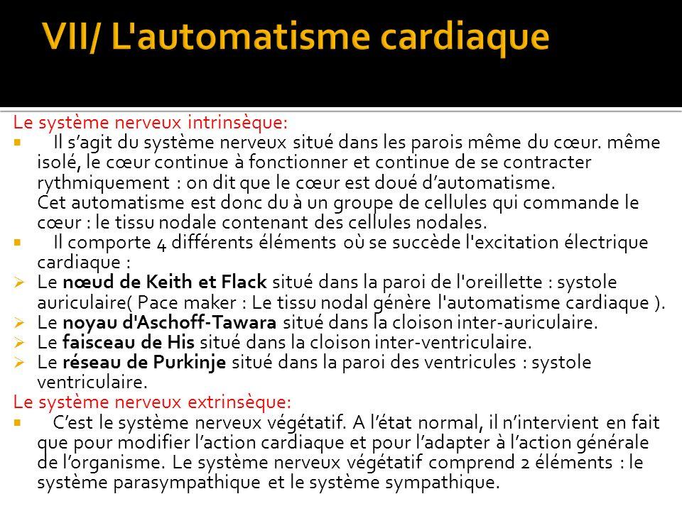 VII/ L automatisme cardiaque
