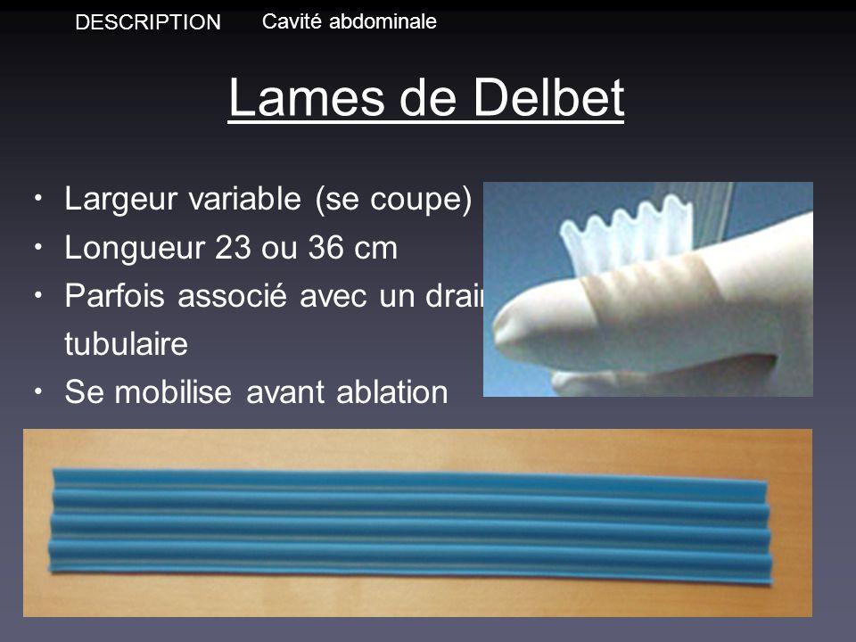 Lames de Delbet Largeur variable (se coupe) Longueur 23 ou 36 cm