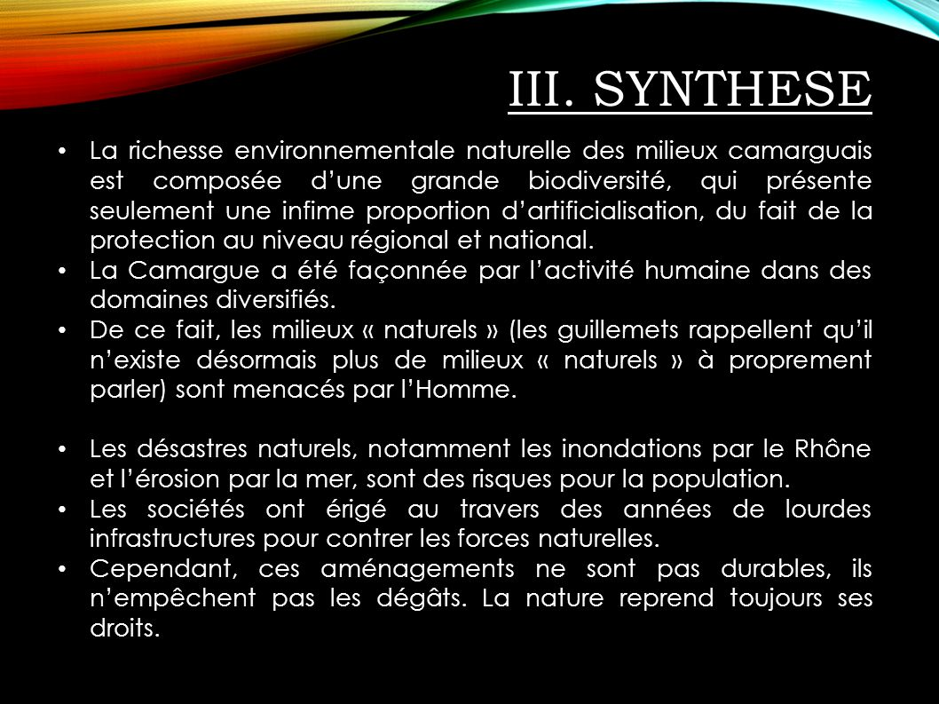 III. SYNTHESE