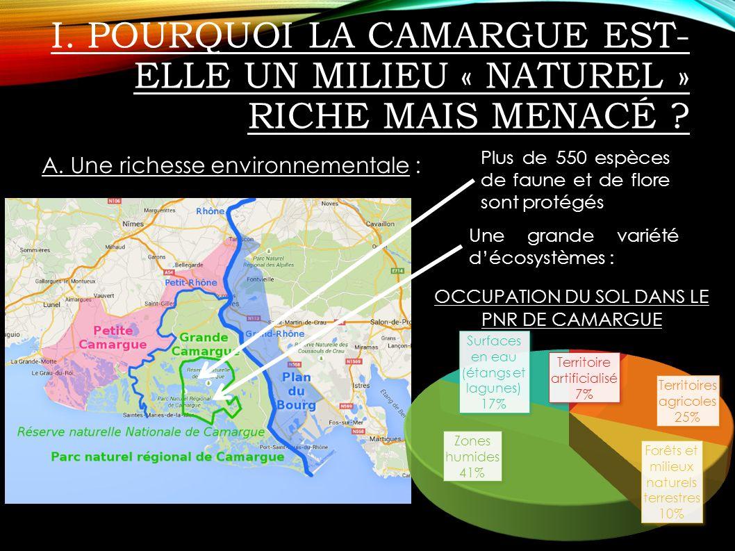 I. Pourquoi la Camargue est-elle un milieu « naturel » riche mais menacé