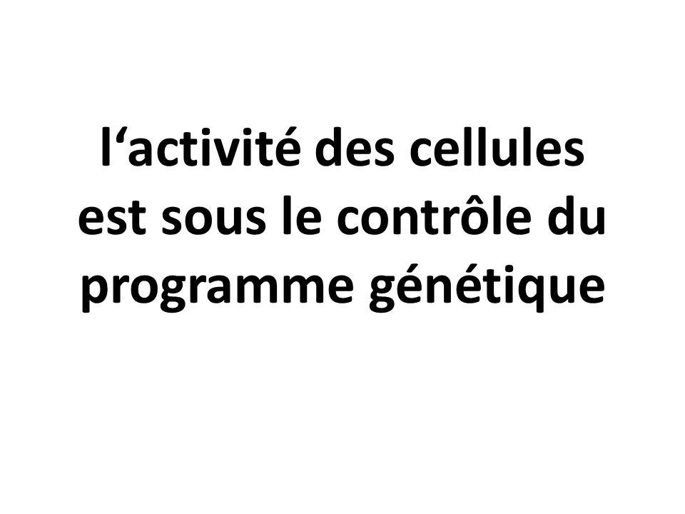l'activité des cellules est sous le contrôle du programme génétique