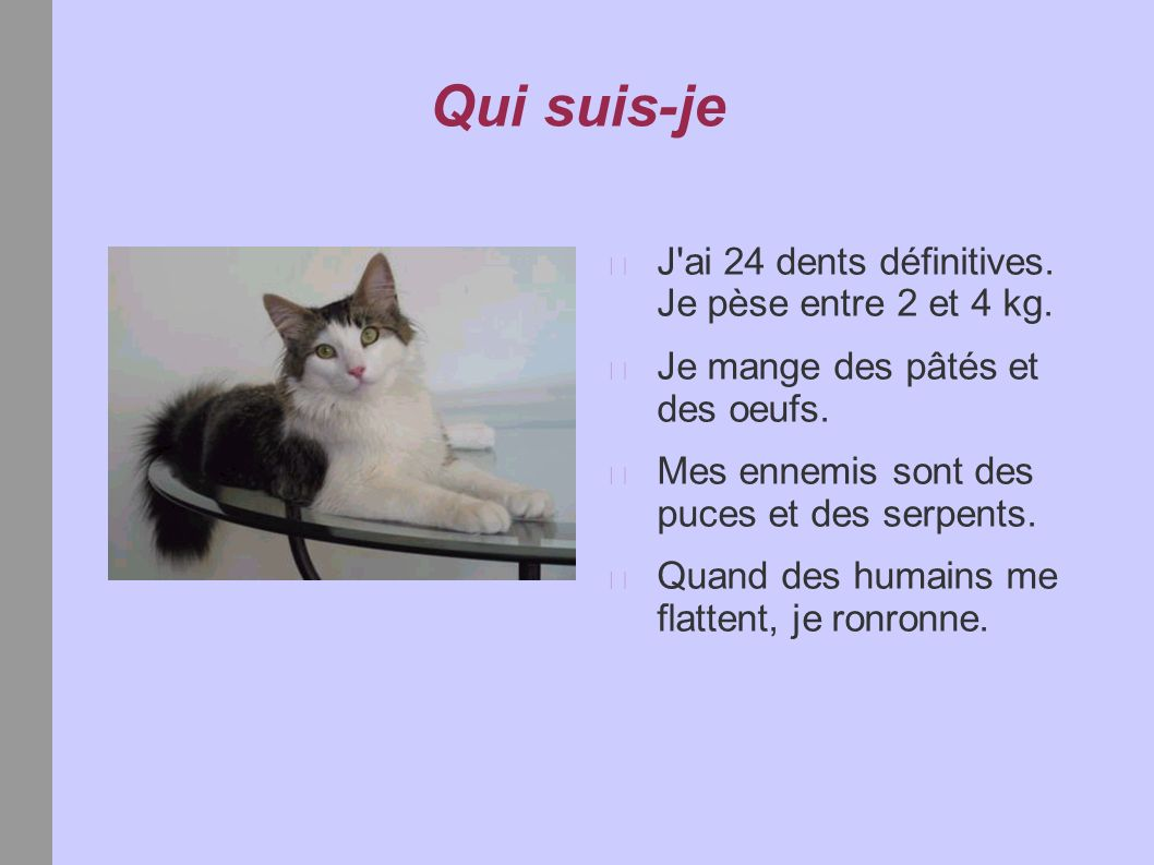 Mon livre de devinettes kevin ppt video online t l charger - Mes chats ont des puces ...