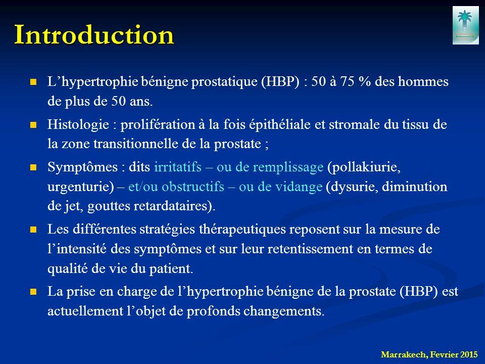 hypertrophie b nigne de la prostate epid miologie diagnostic ppt video online t l charger. Black Bedroom Furniture Sets. Home Design Ideas