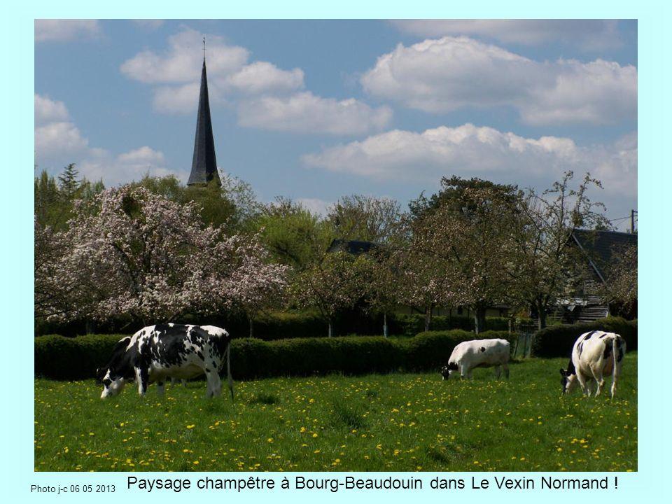 Paysage champêtre à Bourg-Beaudouin dans Le Vexin Normand !