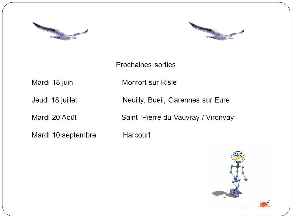 Prochaines sorties Mardi 18 juin Monfort sur Risle. Jeudi 18 juillet Neuilly, Bueil, Garennes sur Eure.