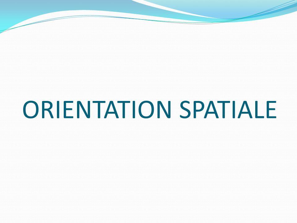 ORIENTATION SPATIALE
