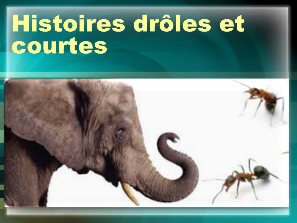 Histoires drôles et courtes - ppt video online télécharger