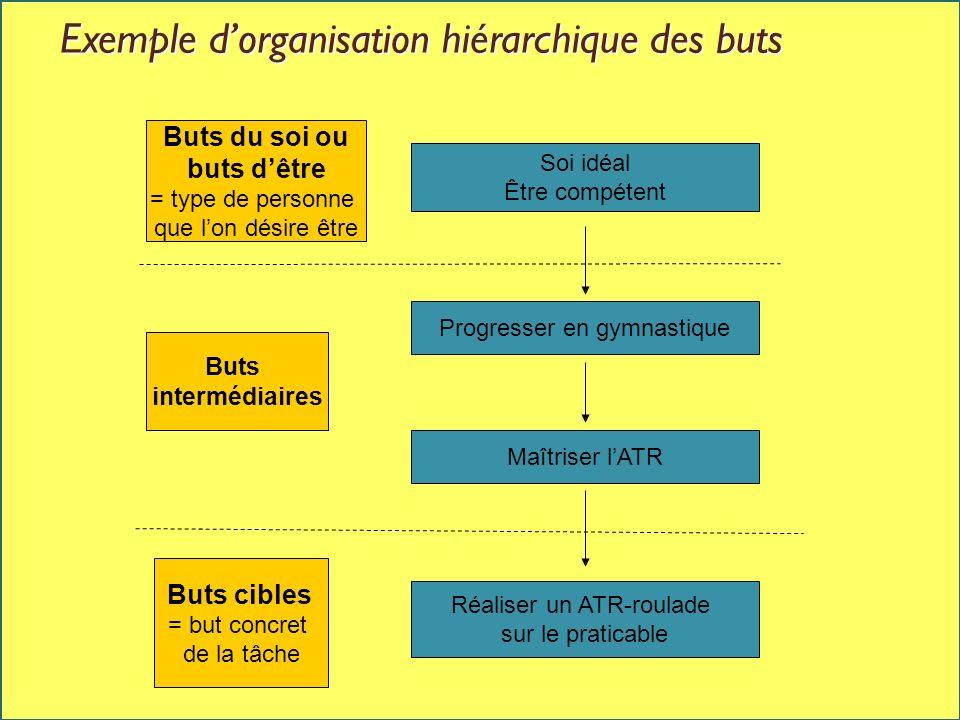 Exemple d'organisation hiérarchique des buts