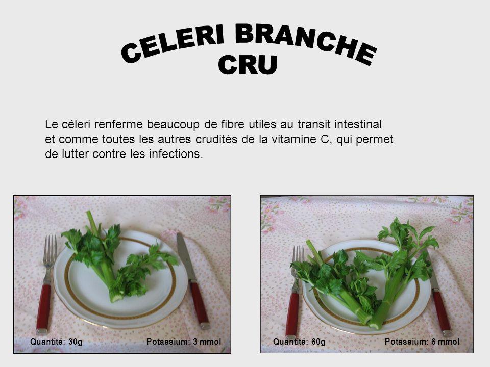 CELERI BRANCHE CRU. Le céleri renferme beaucoup de fibre utiles au transit intestinal.