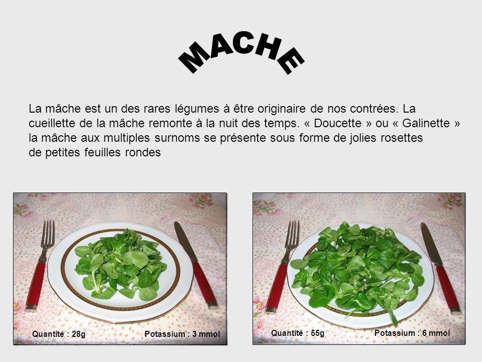 MACHE La mâche est un des rares légumes à être originaire de nos contrées. La.