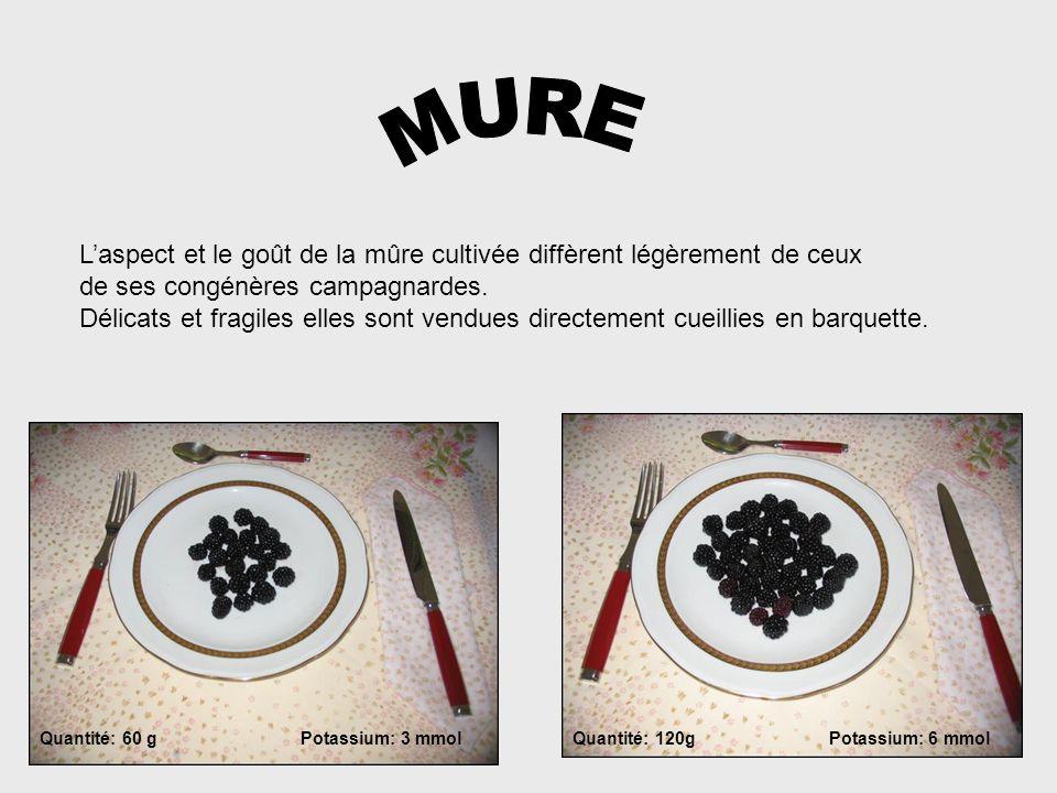 MURE L'aspect et le goût de la mûre cultivée diffèrent légèrement de ceux. de ses congénères campagnardes.