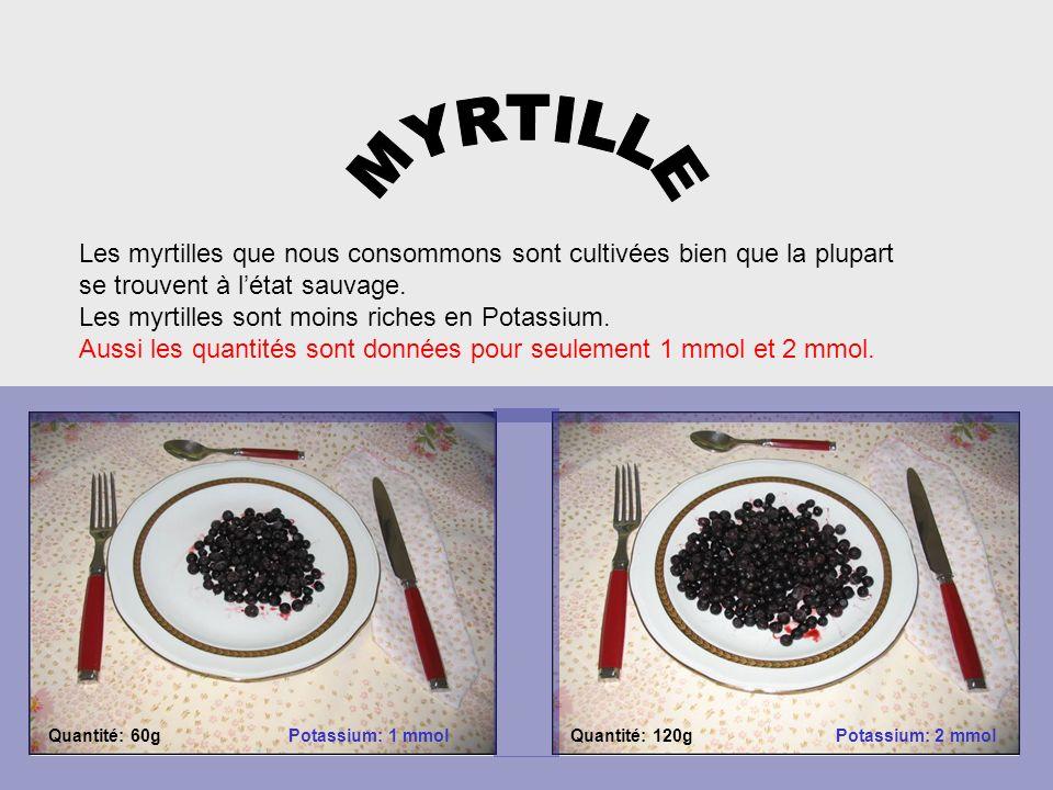 MYRTILLE Les myrtilles que nous consommons sont cultivées bien que la plupart. se trouvent à l'état sauvage.