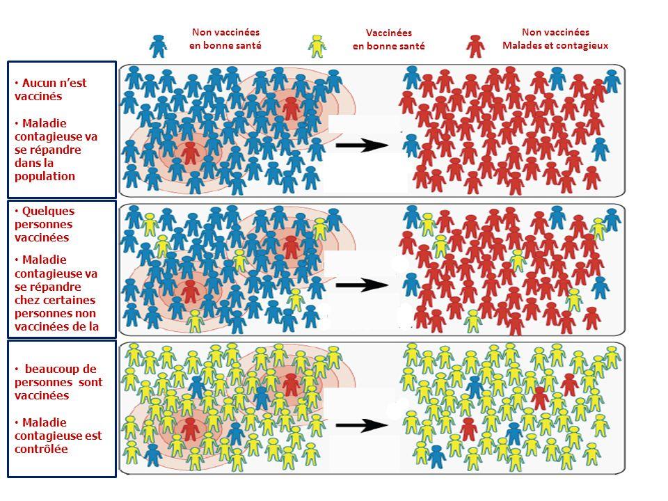 Non vaccinées en bonne santé. Vaccinées. en bonne santé. Non vaccinées. Malades et contagieux. Aucun n'est vaccinés.