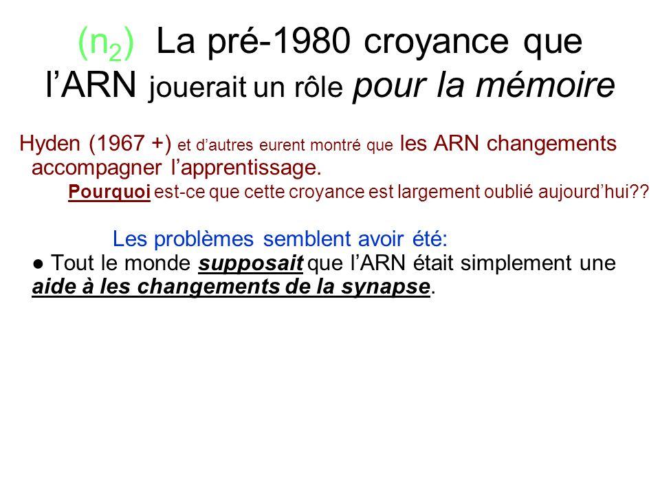 (n2) La pré-1980 croyance que l'ARN jouerait un rôle pour la mémoire