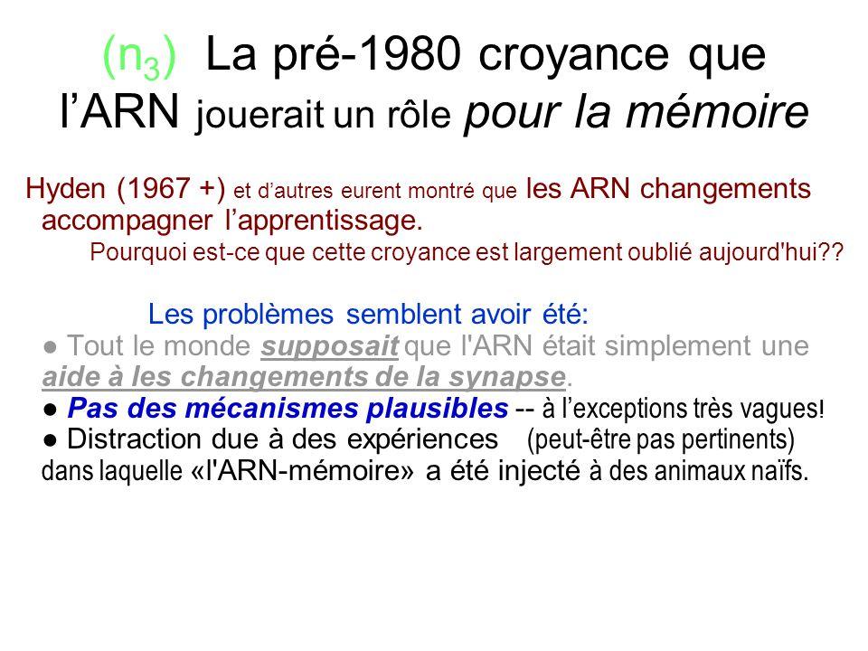 (n3) La pré-1980 croyance que l'ARN jouerait un rôle pour la mémoire