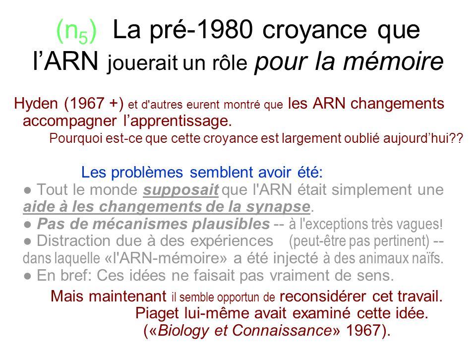 (n5) La pré-1980 croyance que l'ARN jouerait un rôle pour la mémoire