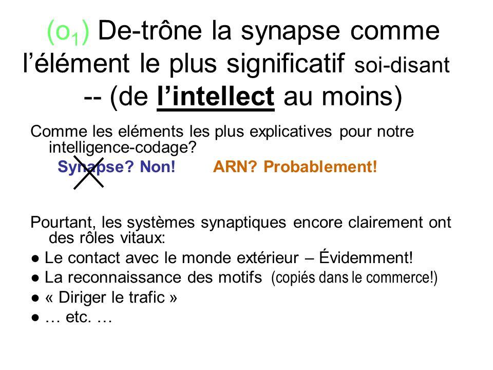 (o1) De-trône la synapse comme l'élément le plus significatif soi-disant --- (de l'intellect au moins)