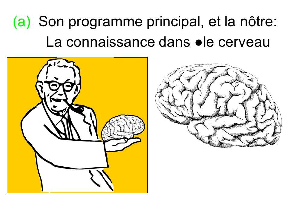 (a) Son programme principal, et la nôtre: La connaissance dans ●le cerveau