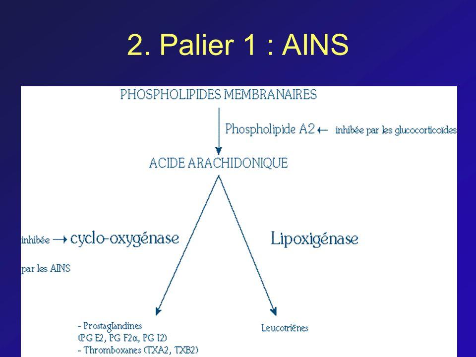 2. Palier 1 : AINS