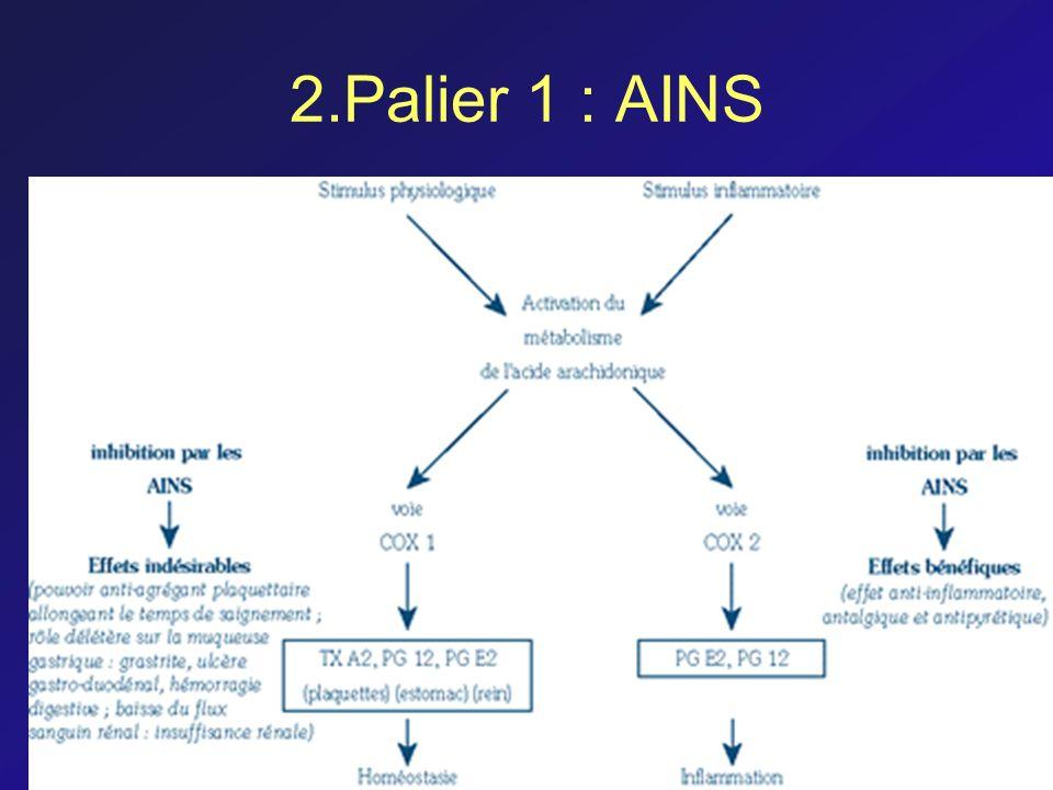 2.Palier 1 : AINS