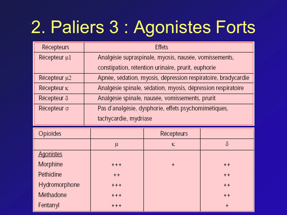 2. Paliers 3 : Agonistes Forts
