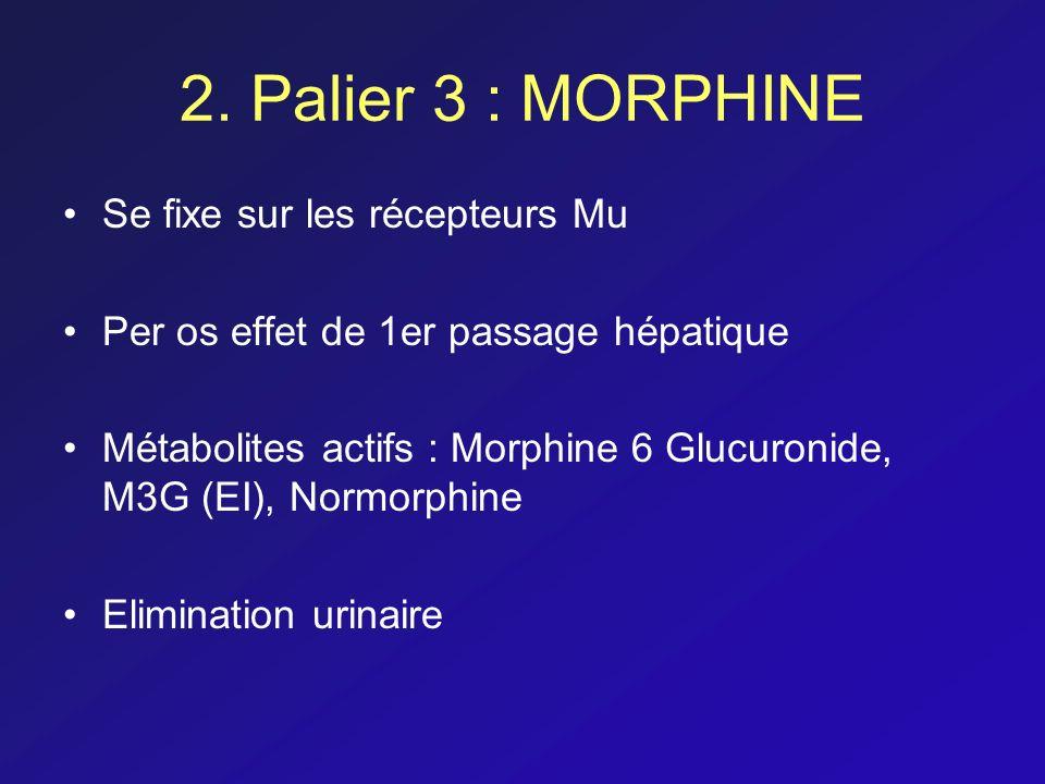 2. Palier 3 : MORPHINE Se fixe sur les récepteurs Mu