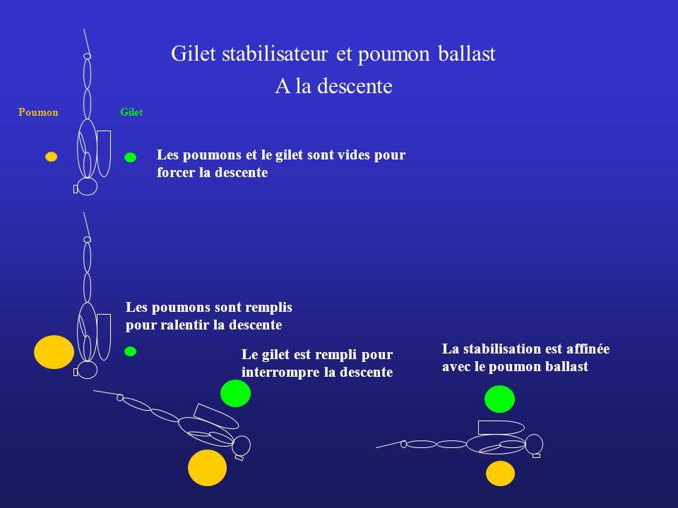 Gilet stabilisateur et poumon ballast