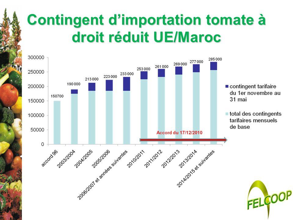 Contingent d'importation tomate à droit réduit UE/Maroc