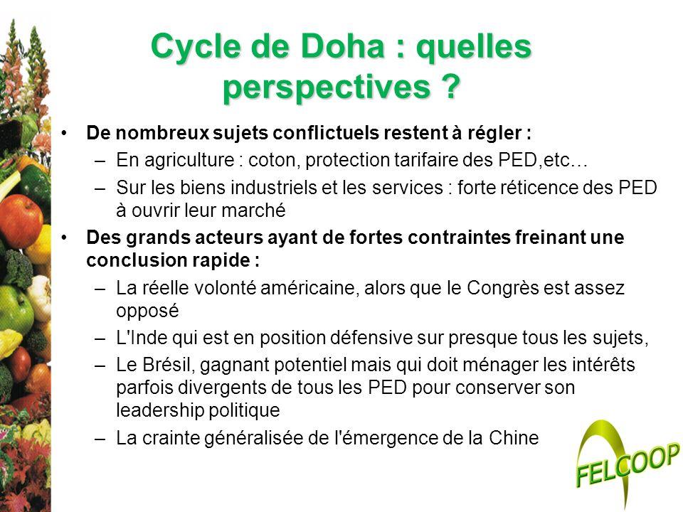 Cycle de Doha : quelles perspectives