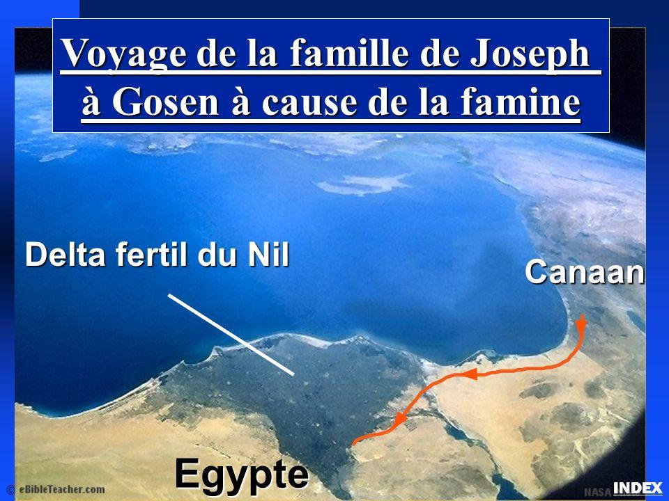 La famille de Joseph en Gosen