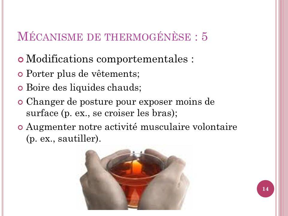 Mécanisme de thermogénèse : 5