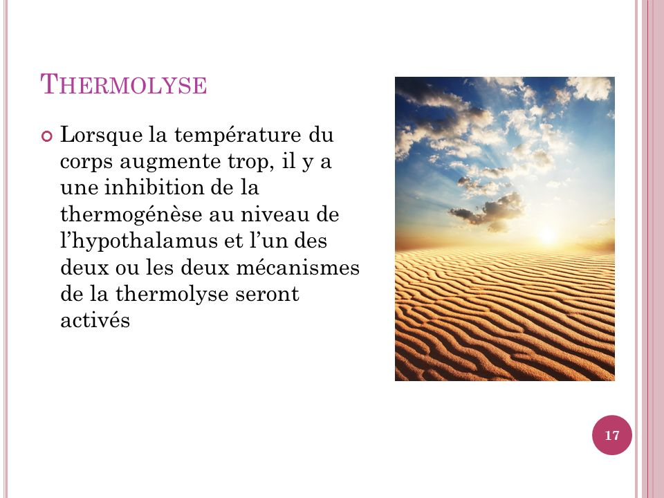 Thermolyse