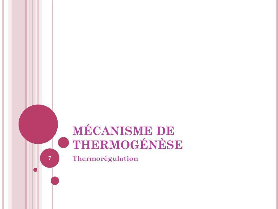 MÉCANISME DE THERMOGÉNÈSE