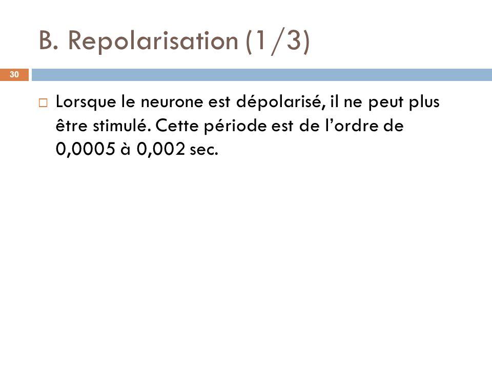 B.Repolarisation (1/3)Lorsque le neurone est dépolarisé, il ne peut plus être stimulé.