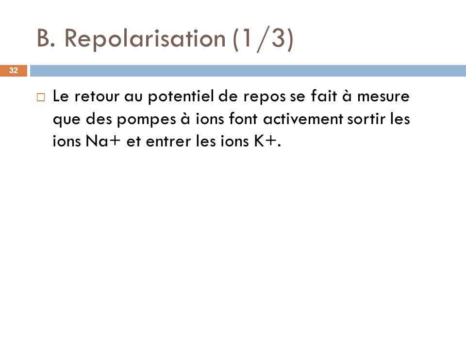 B. Repolarisation (1/3)