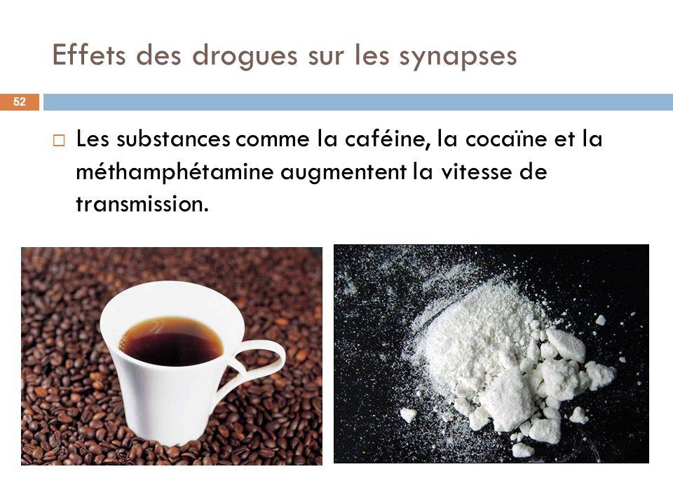 Effets des drogues sur les synapses