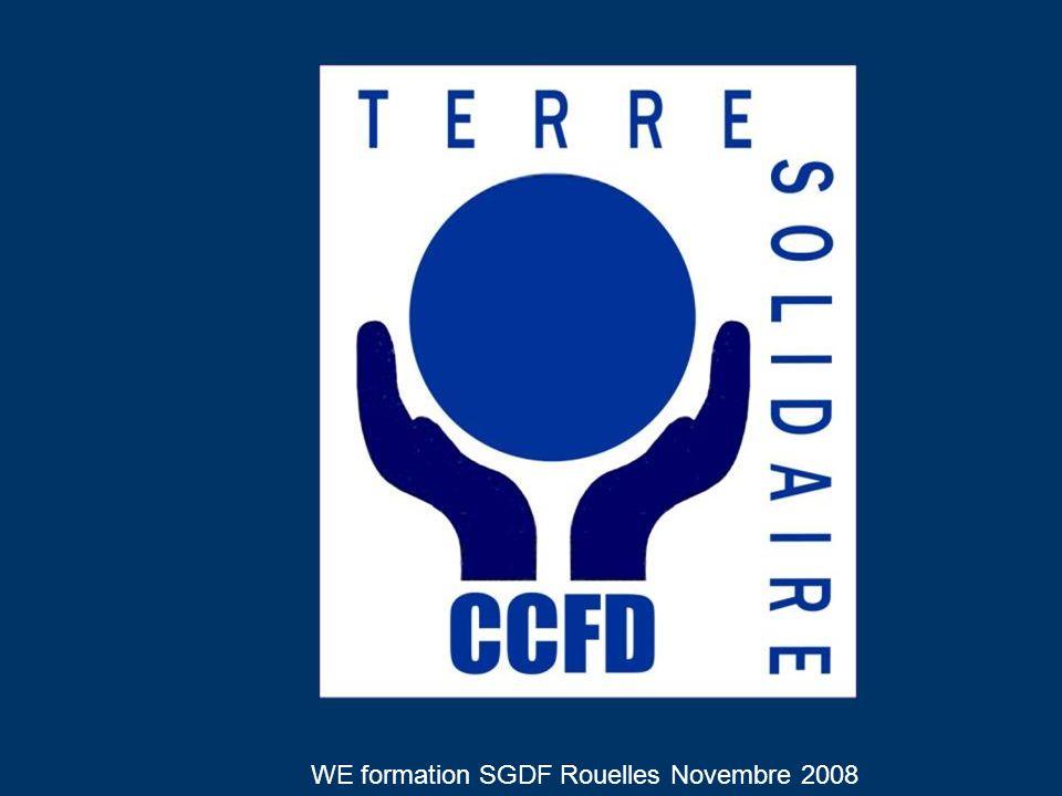 WE formation SGDF Rouelles Novembre 2008