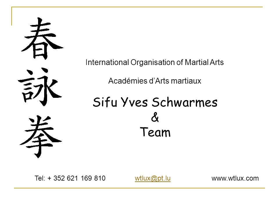 Sifu Yves Schwarmes & Team International Organisation of Martial Arts