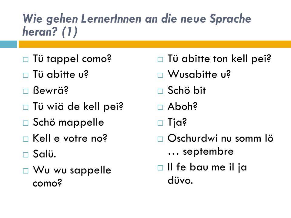 Wie gehen LernerInnen an die neue Sprache heran (1)