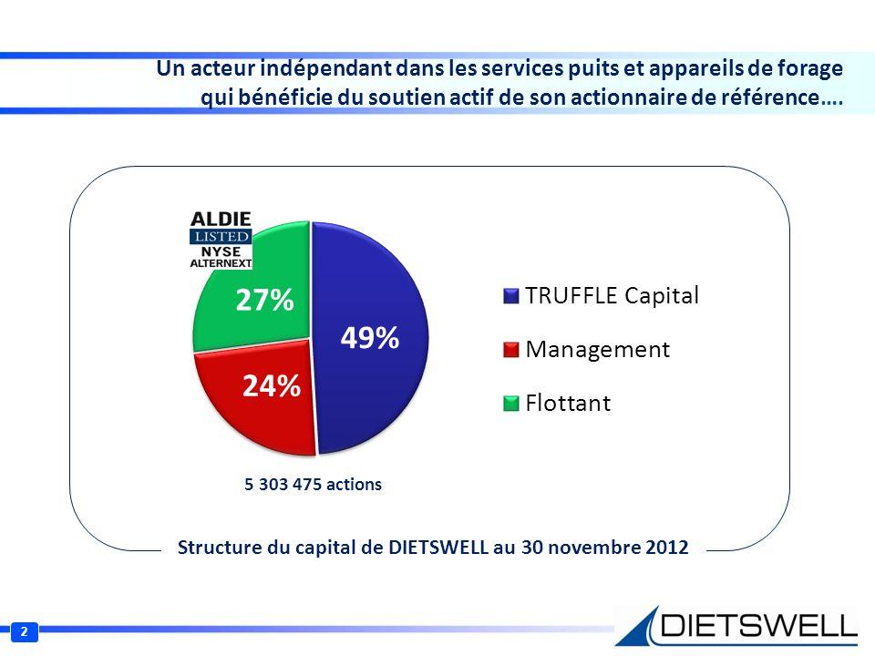 Structure du capital de DIETSWELL au 30 novembre 2012