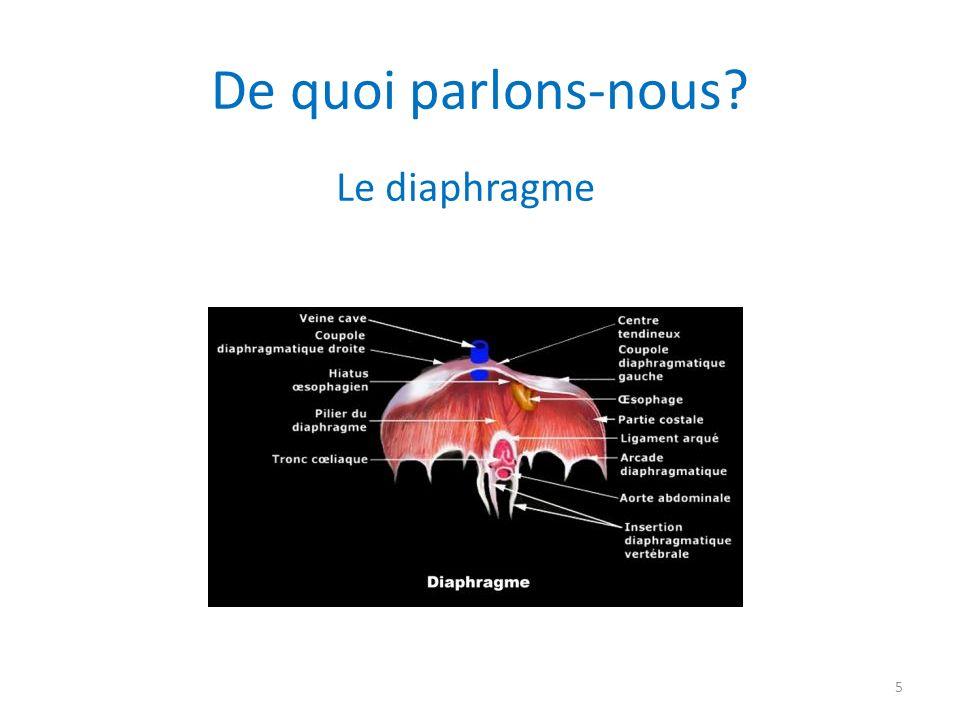 De quoi parlons-nous Le diaphragme