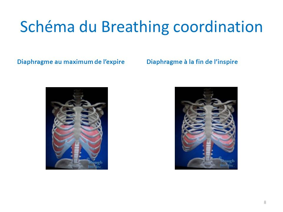 Schéma du Breathing coordination