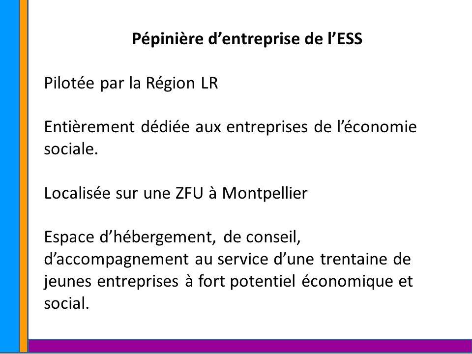Pépinière d'entreprise de l'ESS