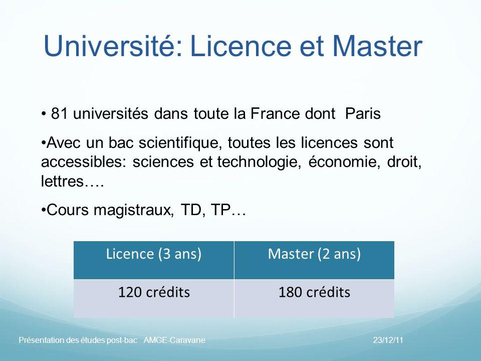 Université: Licence et Master