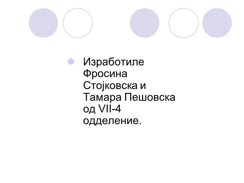 Изработиле Фросина Стојковска и Тамара Пешовска од VII-4 одделение.