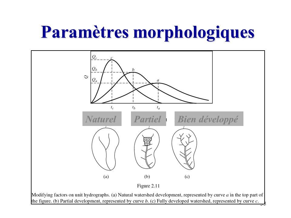 Paramètres morphologiques
