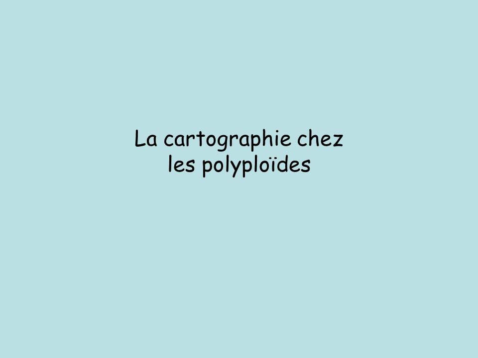 La cartographie chez les polyploïdes