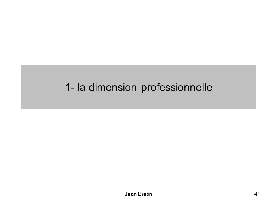1- la dimension professionnelle