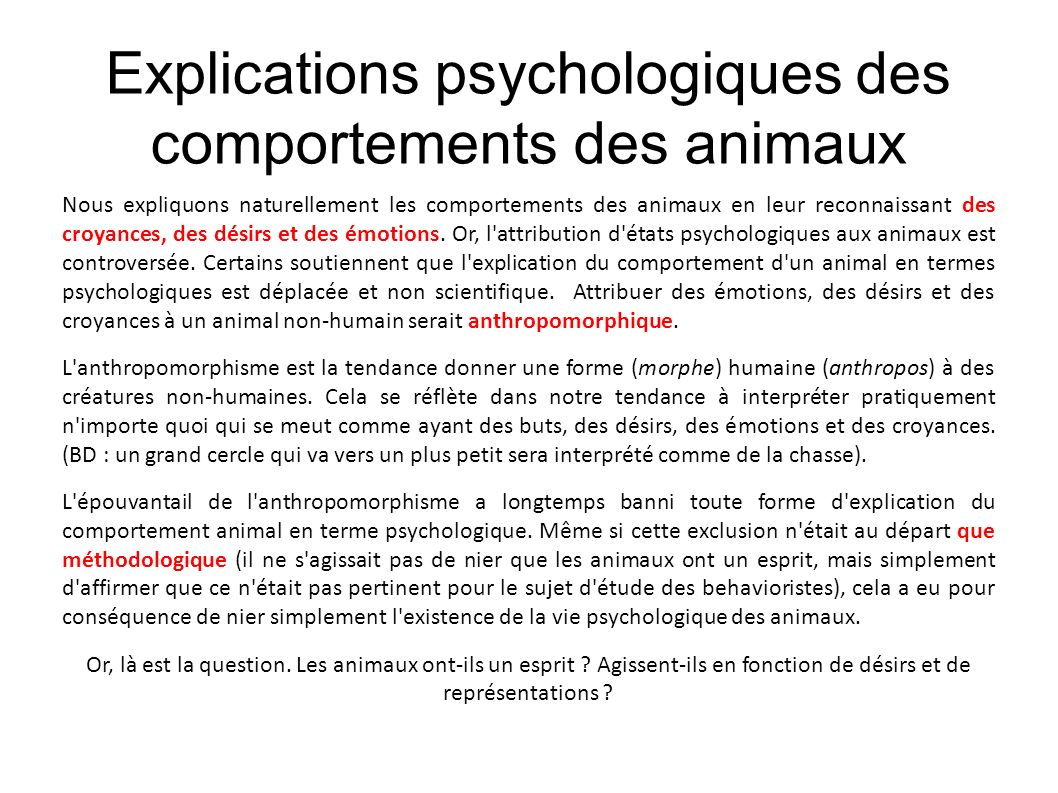 Explications psychologiques des comportements des animaux